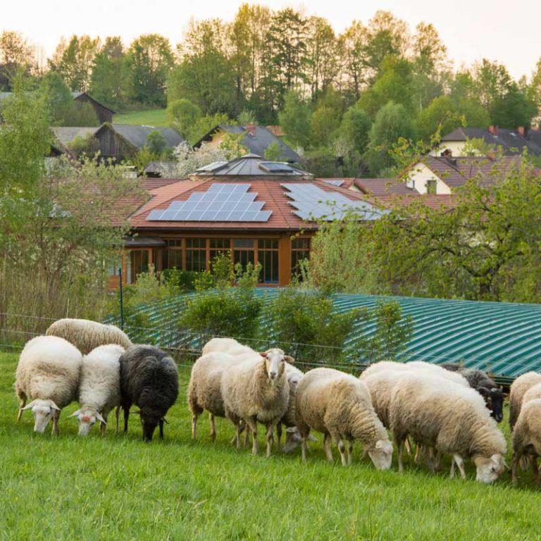 Ein lauer Frühlingsabend in Harmannstein...